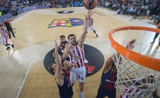 """Pirmoje akistatoje su """"Žalgiriu"""" graikams nepadės K.Papanikolaou"""