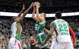 FIBA džiūgauja: 12 iš 16-os Turkijos klubų pasirinko Čempionų lygą
