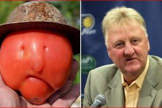 J.Van Gundy apie L.Birdo sulyginimą su pomidoru: tai nepagarba!