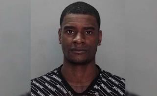 """""""Suns"""" puolėjas kaltinamas pasipriešinimu sulaikant ir bandymu pabėgti"""
